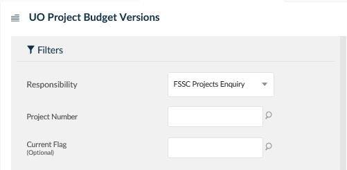 uo project budget versions